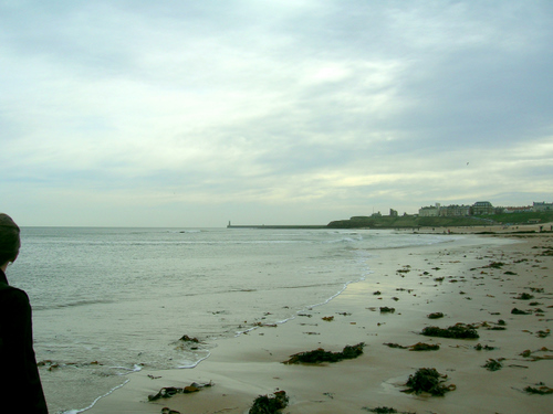 Photograph: Tynemouth headland in the distance, beyond a seaweed covered beach