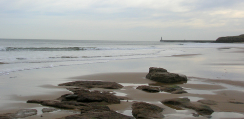 Photograph: The wet sand of Tynemouth beach, and the North Sea